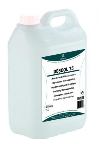Απολυμαντικό Γενικής Χρήσης Χωρίς Ξέβγαλμα 5L - Descol 75